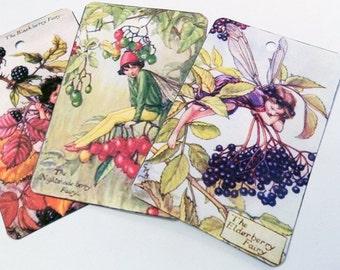 Berry Fairy Tags - Set of 6 - Vintage Fairy Tags - Blackberry Fairy - Mulberry Fairy - Cherry Fairy - Nightshade Fairy - Edwardian Fairies