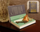 Hollow Book Safe - Fantastic Beasts and Where to Find Them - Secret Book Safe
