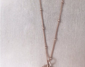 Handmade Mini Shark Tooth Necklace - Handmade Necklace