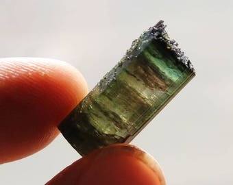 Blue, Green and Pink Watermelon Tourmaline From Brazil