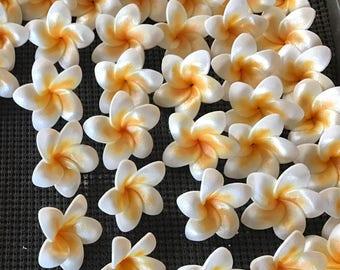 Gum Paste Hawaiian Plumeria White and Yellow 6 flowers