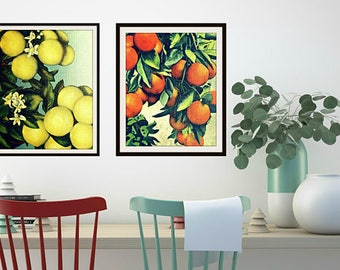 Farmhouse Kitchen Decor, Farmhouse Kitchen Wall Art, Vintage Botanical Art Grapefruit Yellow Kitchen Decor, 11x14 or 16x20 yellow green