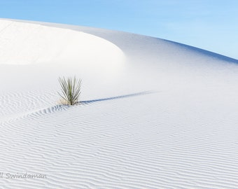 White Sands Nature Landscape One