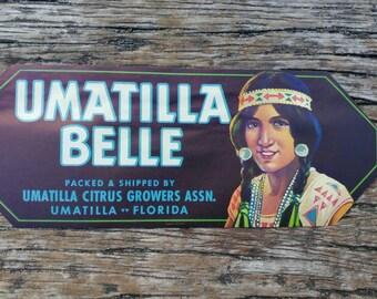 5 Fruit Labels Florida 1930s Umatilla Belle American Indian Girl Citrus Label Orange Label, Strip Label, Florida Oranges, Vintage Florida Ad
