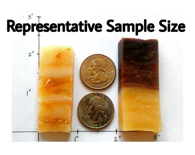 Soapy Sample Pack - 20 samples -- All Natural Soap, Handmade Soap, Barely-Scented Soap, Hot Process Soap, Vegetarian/Vegan Soap, Gift