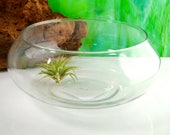 Glass Bowl Only ~ 2 Sizes available ~ DIY ~ Create your own Terrarium ~ Sand, Air Plants, Shells and Miniatures are available in my Shop