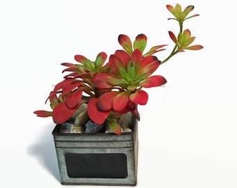 Faux Red Orange Succulent, Succulent In A Metal Container, Succulents, Office Decor, Home Decor, Succulent Decor