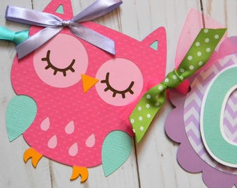 Owl Birthday Party High Chair Mini Banner in Pink, Purple, Green and Teal - Owl Party Decorations - Owl Party Supplies