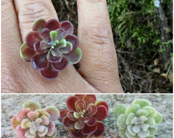 Succulent adjustable ring, Hens and chicks ring, forest, woodland