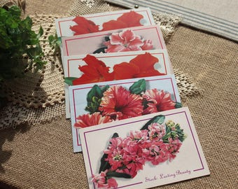 Set of 5 vintage floral postcards,vintage ephemera, pink and red flowers