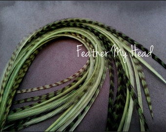 Feather Hair Extension 7-9 inches Long (18-23cm) Thin Fashion Euro - Grizzly Stripe And Solid Mix - 10 Pc Sage Green