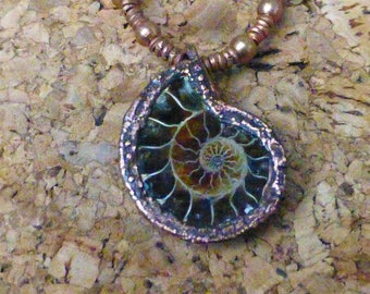 Necklace ammonite fossil