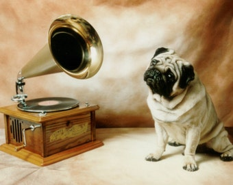 Vintage Pug with Record Player Decoupaged on Wood