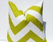 15% Off Sale Decorative Pillow Green Pillow Throw Pillow 26x26 Euro Pillow cover Pillow Green Pillow Euro Sham Floor Pillow Accent Pillow Do