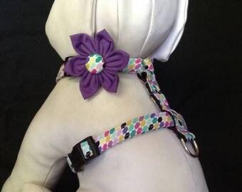 Dog harness flower/bow tie set  -  Geometric Bliss - size XS, S, M