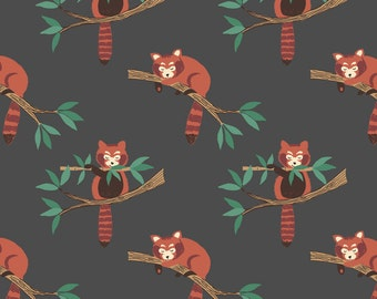 Fat Quarter Red Panda on Dark Grey 100% Cotton Quilting Fabric Lewis and Irene