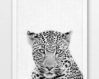 Leopard Print, Leopard Photo Print, African Safari Animals Black White Photography, Nursery Animal Wall Art, Kids Room Printable Art Decor
