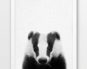 Badger Print, Cute Badger Photo, Woodlands Animals Photo, Nursery Baby Shower Gift Wall Art, Baby Animal Black White Photo, Kids Room Decor