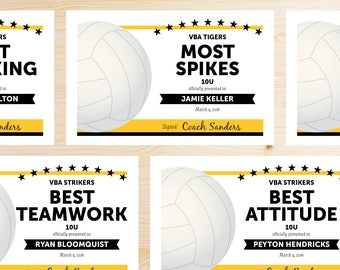 Editable Volleyball Award Certificates - INSTANT DOWNLOAD PRINTABLE - Black and Gold Yellow