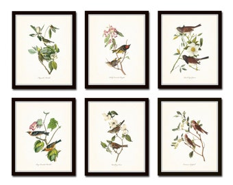 Audubon Bird Prints Set No. 1, Vintage Bird Prints, Giclee, Audubon Prints, Art Print, Wall Art, Bird Print, Natural History Art