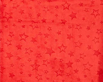 Shannon Fabrics Embossed Star Cuddle Fabric