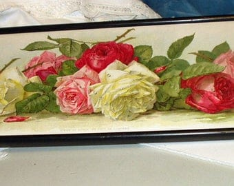 Paul de Longpre 1895 Pink White Red Rose Cabbage Flowers Titled Study of Roses Original Yard long Antique Frame Picture flawed