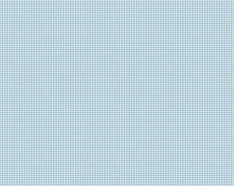 CLEARANCE FABRIC Lucky Star Cotton Light Blue Gingham Fabric by Zoe Pearn for Riley Blake Designs