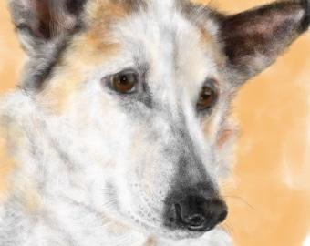 Custom Dog Pet Portrait, custom portrait, dog portrait, pet portrait, dog lover, dog art, gift, wall art, dog, artwork, pet memorial, pet