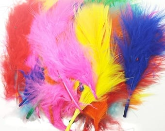 Mixed Colours and White Marabou Feathers 4-6 inches, 6 grams used in Native American Craft