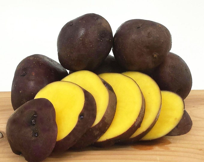 Midnight Moon Seed Potato 5 Lbs. Certified Organic Purple and Yellow Seed Potatoes- Spring Shipping Non-GMO