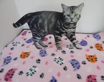 Kitty cat blanket