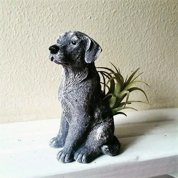 Labrador air plant holder, black lab, dog lover gift, pug, terrier