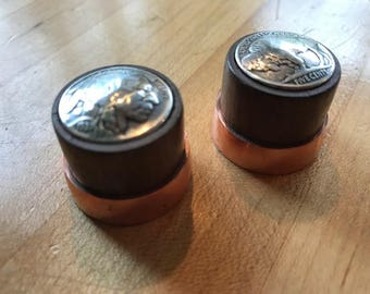 Indian/buffalo head guitar knobs