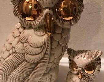 Golden Eye Owl Set