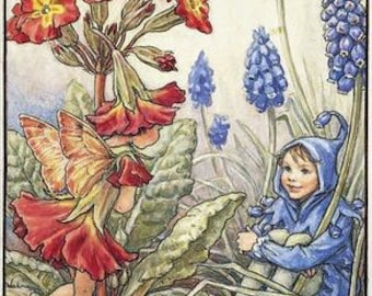 The Polyanthus and Grape Hyacinth Fairies - Counted cross stitch pattern in PDF format