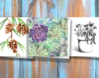 3x3 Plant Variety Pack - 3 Cards