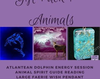 Animals Gift Pack, Animal Pack, Gift Pack, Great Value Gift Pack, Any Occasion Gift Pack, Animal Spirit Reading, Energy Session, Faerie Pend