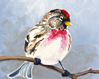 "Red Poll Bird Songbird Original Bird Painting Acrylic on Board 4""x4"""