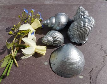 METALLIC HANDPAINTED SEASHELLS ~ Nautical Seaside Beach Wedding ~  Keepsakes ~ Table Decorations ~ Bronze Silver Gold Copper ~ Sea Shells