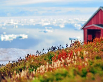 Greenland, Fine Art, Travel Photography, Summer Arctic Landscape