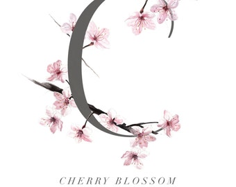 Botanical Illustration. Alphabet Print. Limited edition fine art print. Botanical Art Print. Cherry Blossom. Starkeys Lane. Gail jones