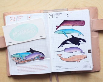 Transparent whale stickers - suitable for planning and journaling