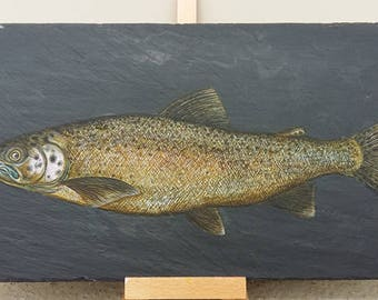 Rainbow Trout - Handpainted Reclaimed Slate Wall Hanging