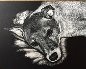 Custom Scratchboard Etching Pet Portraits