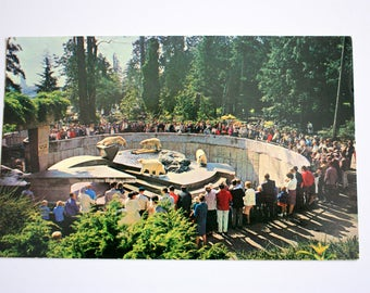 Polar Bears Stanley Park Zoo Postcard / Vancouver British Columbia Postcard / polar bears postcard
