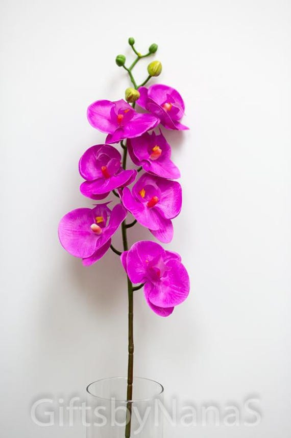 hot pink real touch orchids, real touch flowers, tropical pink, Beautiful flower