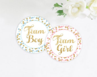 Twinkle Twinkle Little Star Gender Reveal Stickers, Team Girl and Team Boy Stickers, Gender Reveal Party