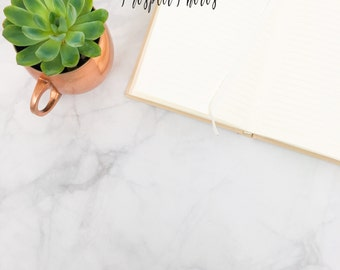 Succulent Styled Stock Photography| Notebook stock photos| Instagram photos