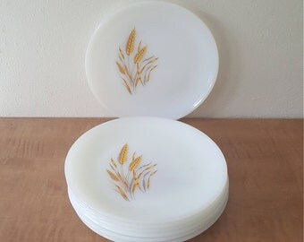 FireKing Wheat Lunch or Bread and Butter Plates Set of 7 ~ Golden Wheat on Anchor Hocking Milk Glass Made in the USA