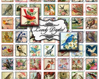 "1"" Digital Download Vintage Birds Squares Jewelry Charm Pendant Scrapbook Embellishment Printable Collage Sheet"